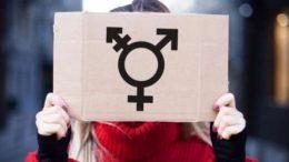 radical transgenderism