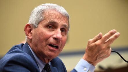 Medical expert- Anthony Fauci
