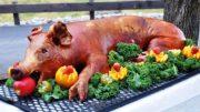 Mandatory Pig Roasts